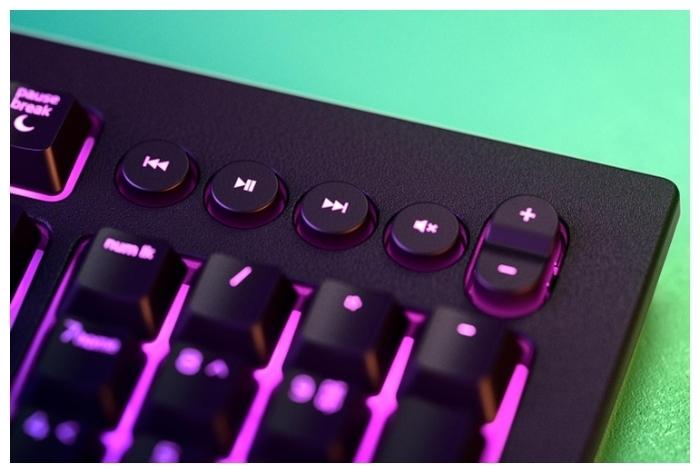 Razer Cynosa V2 Black - количество клавиш: 104, с цифровым блоком